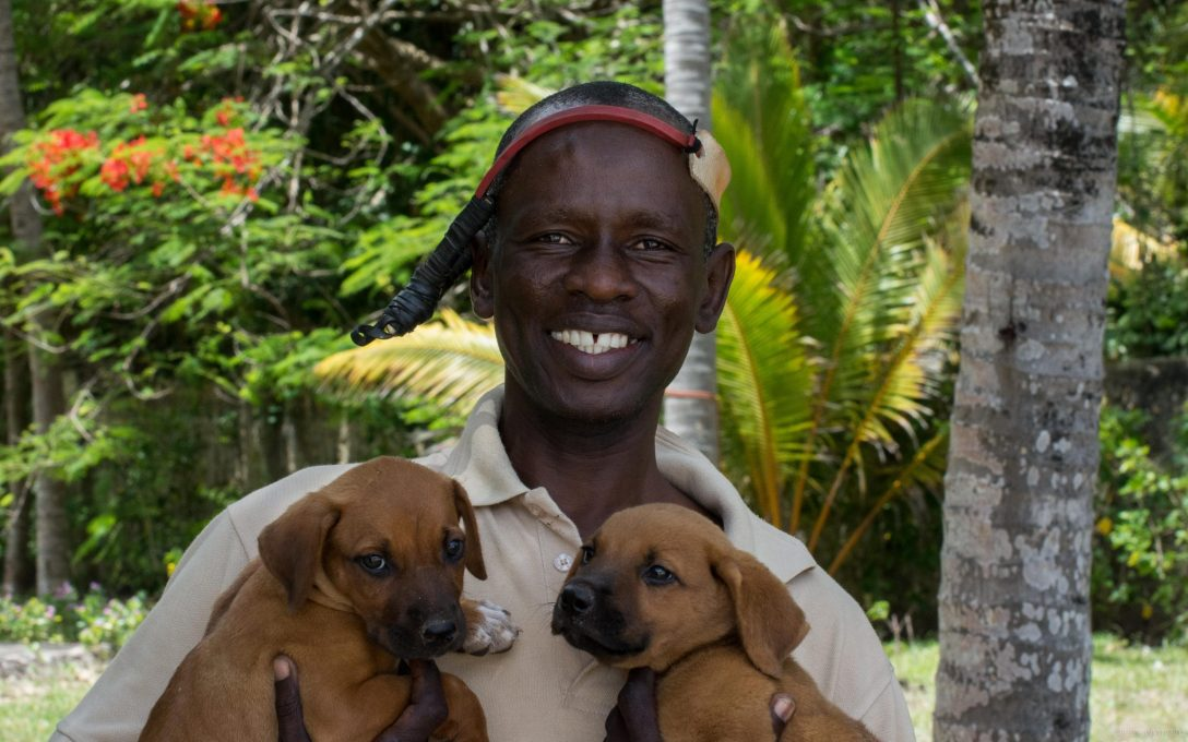 man-with-puppies